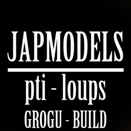 MASTER CLASS JAPMODELS - PTI LOUP - GROGU BUILD
