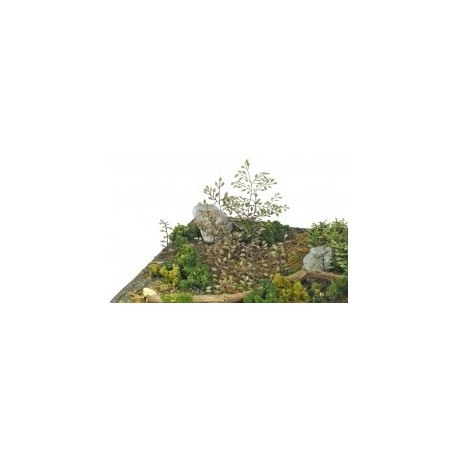 PLANTES PHOTODECOUPE - 1/35 - SET C