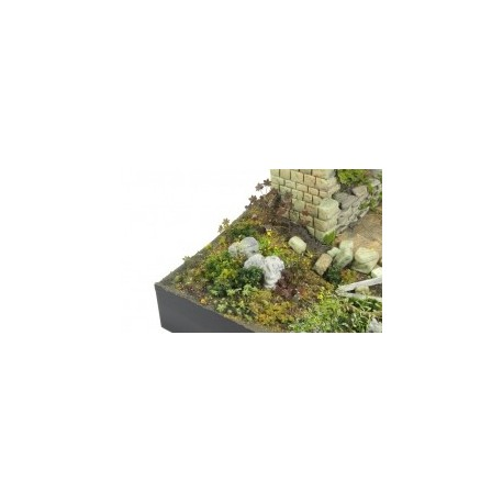 PLANTES PHOTODECOUPE - 1/35 - SET D
